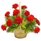 14 Red carnation Flowers Basket