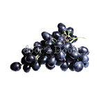 Grapes - Black